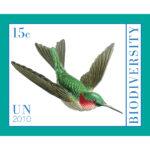 15cBiodiversity2011single
