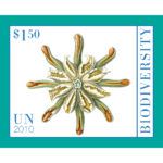 $1bio2011single
