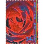 NY.2001.Rose.34.single