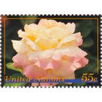 NY.1997.Peace-rose.55.single